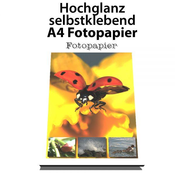 Selbstklebendes Fotopapier, Glossy/Hochglanz, Din A4, 20 Blatt